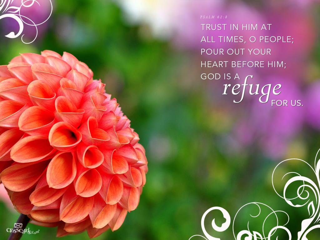 Refuge - 1024 x 768