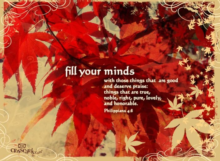 Fill Your Minds - 800 x 600