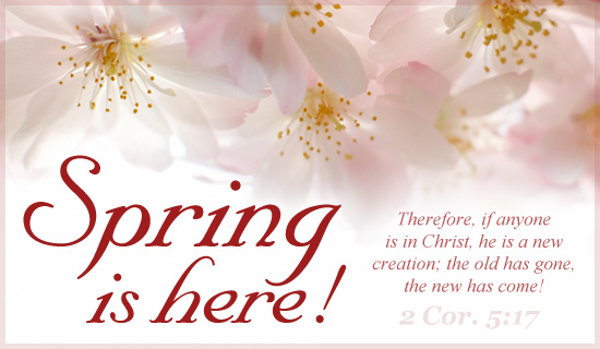 Free New Creation ECard EMail Free Personalized Spring