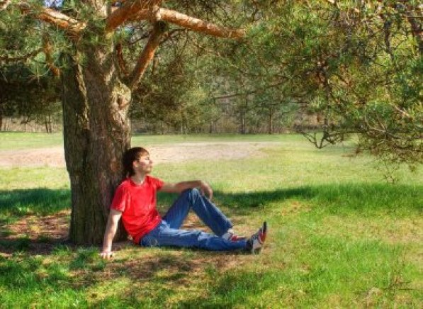 Image result for nathanael under fig tree