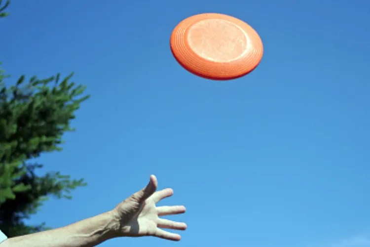 how_the_frisbee_took_flight.jpg (750×500)