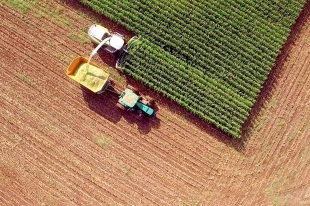 The gentlemen farmers of Wall Street: How the profit motive has seized America's farmland