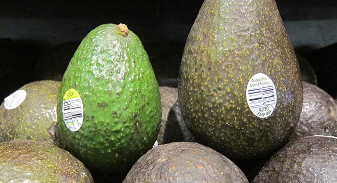 Avocado Prices Plunging San Diego Reader