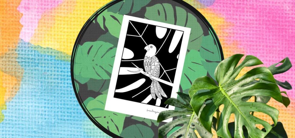 papegojor målarbilder