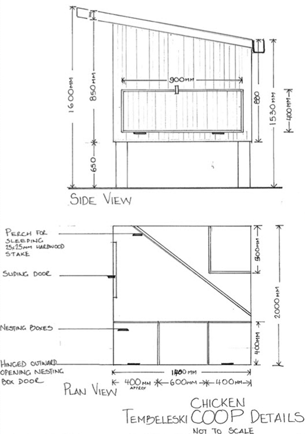 Tree House Floor Framing