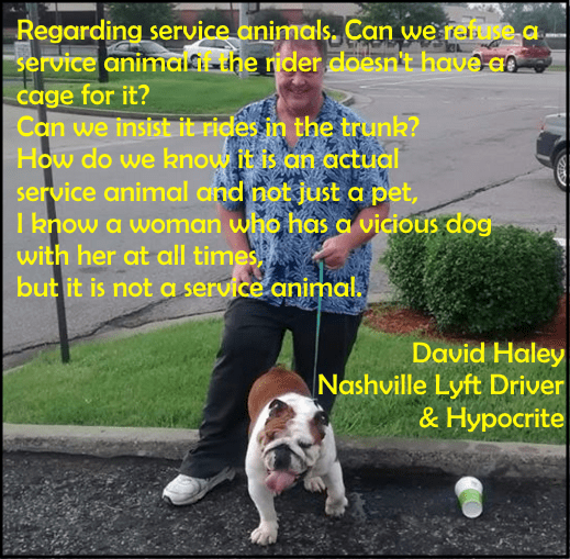 david quote service animals haley