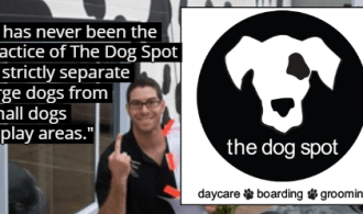 "The Dog Spot testifies ""never strictly separated large dogs from small dogs in play areas"" – Must pay $5,924 in dog's death lawsuit"