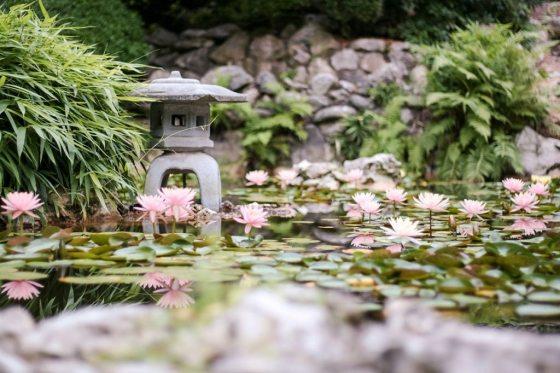 Austin Botanical Gardens