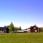 Mika-huset från vägen. Foto: Urban Mikaelsson