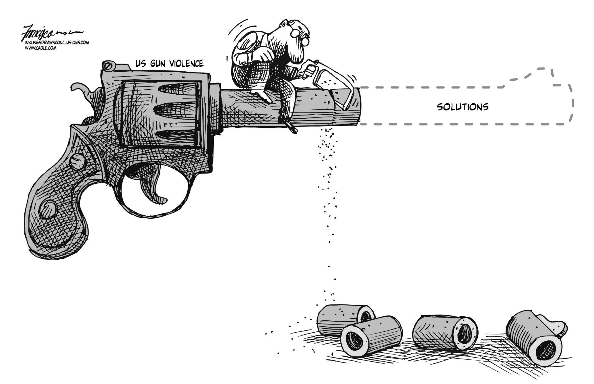 opinion essay gun control
