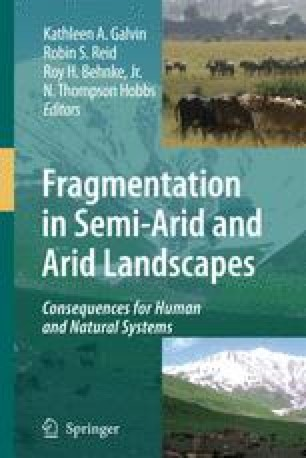From Fragmentation to Reaggregation of Rangelands in the ...