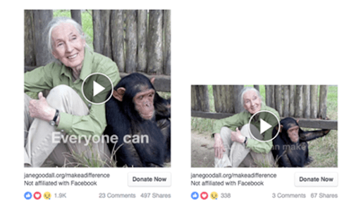 jane goodall institute facebook video ad a/b test