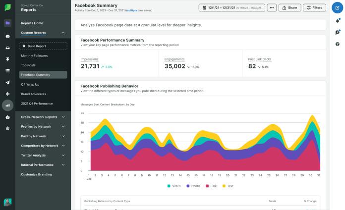 Sprout custom Facebook report