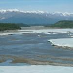 Den mäktiga Yukon River!