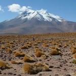Atacamaöknen
