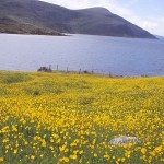 Landskapsvy. South Harris