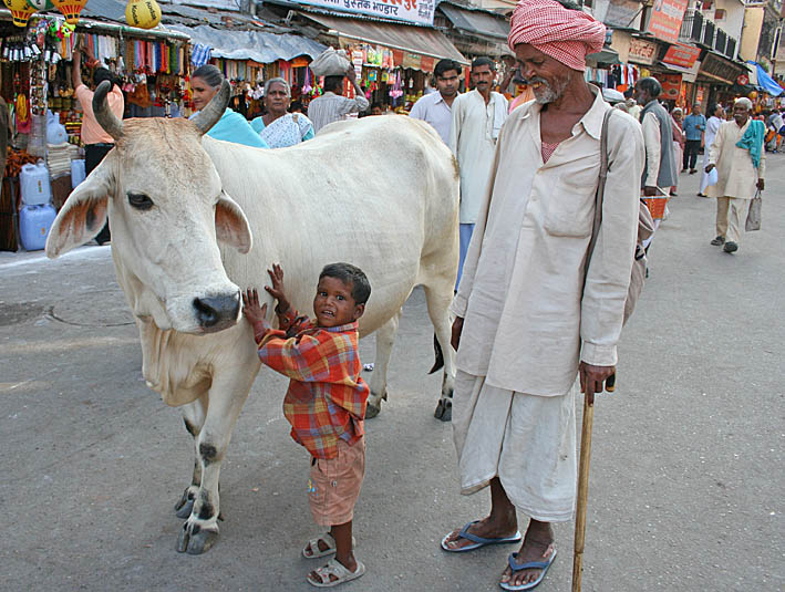 Helig ko. Haridwar