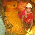 Saffranarbetare. Kolkata