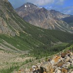 Vandringsmiljö. Jasper National Park (U)