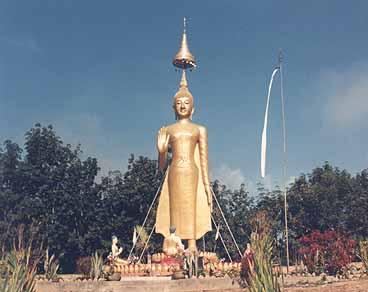 Buddhastaty. Manfeilong