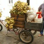 Bananförsäljare. Camaguey