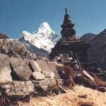 Vy över berget Ama Dablam. Sagarmatha National Park (U)