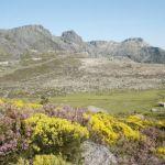 Natur i Serra de Estrela