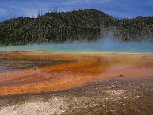 Grand Prismatic Spring. Yellowstone National Park, WY (U)