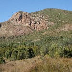 Tasmanian Wilderness. Australien (U)