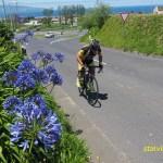 Tävlingscyklist. Ribeira Grande