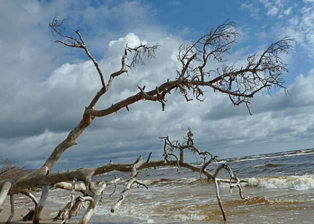 Slitere National Park. Cape Kolka
