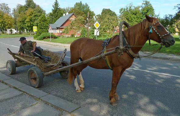 Hästskjuts. Kernave