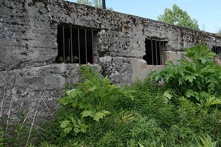 Fd tyskt fångläger. Harsta. Lofoten