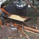 Kvinna rostar kasava. Amazonas