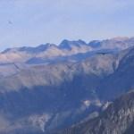 Kondorer. Colca Canyon