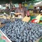 Frukthandlare. Belgrad