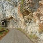 Vägen in i Tara National Park