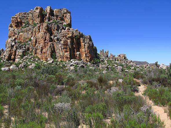 Vandringsled. Cederberg Mountains