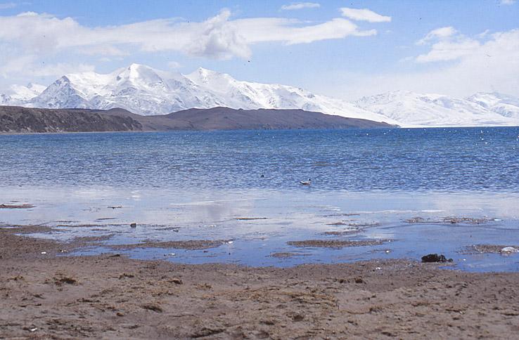 Den heliga sjön Manosaravar