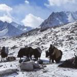 Drira Phuk morgonen efter snöstormen. Kailash