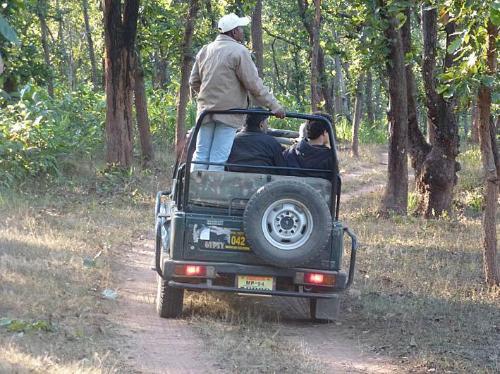 På tigerspaning! Bandhavgarh
