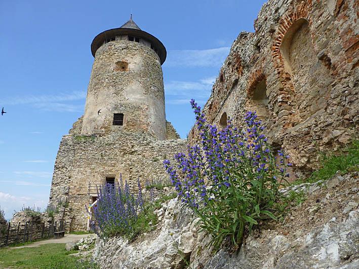 Gotiska tornet . Lubovna Hrad