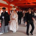 SShintobröllop. Ön Miyajima