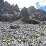 Vandring i Val Venegia (U)