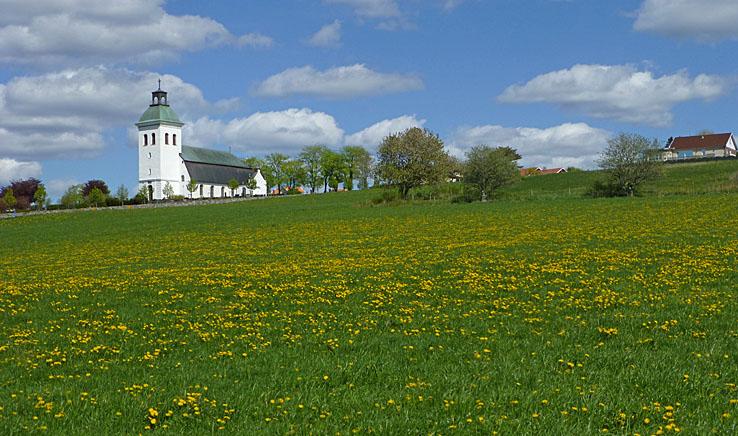 Fjärås kyrka. Cykling Lygnern runt
