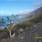 Vackra vägavsnitt under bilturerna. La Palma