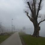Cykla Ätradalsleden. Falköping - Falkenberg. En dimmig morgon i Ulricehamn