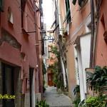 Byn Vernazza. Cinque Terre (U)