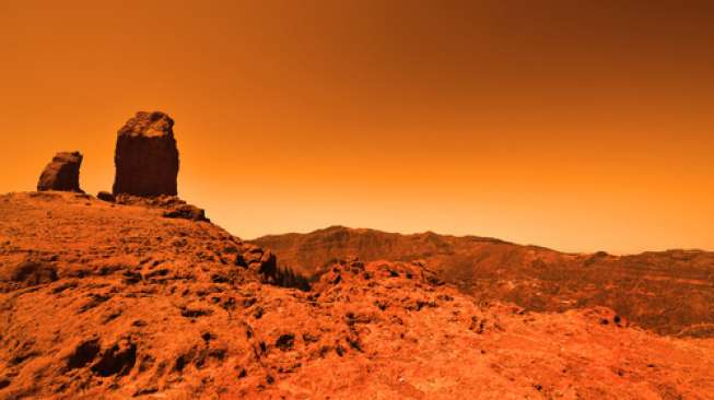 Illustration of the surface of the planet Mars (Shutterstock).