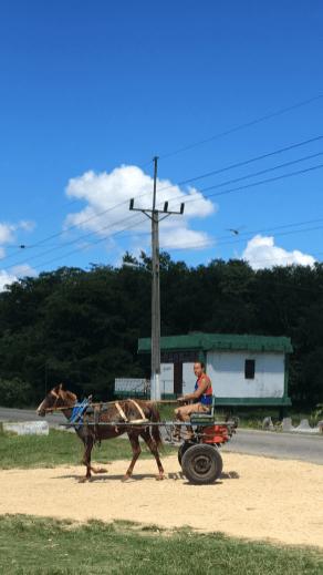 Många olika fordon samsas på vägen